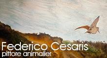Federico Cesaris